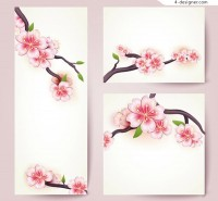 The cherry flower card vector