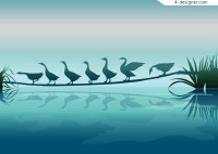 Beautiful swan silhouette vector