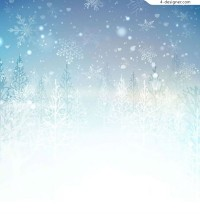 The snow forest landscape
