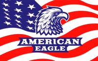 Eagle element logo