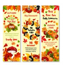 Fall promotion banner
