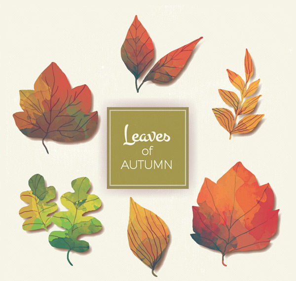 Painted autumn foliage vector