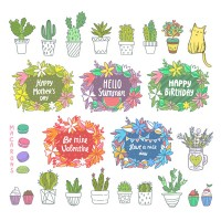 Potted plants and festival labels