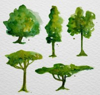 Water painted trees