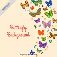 Butterfly group vector