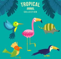 Cartoon tropical animals