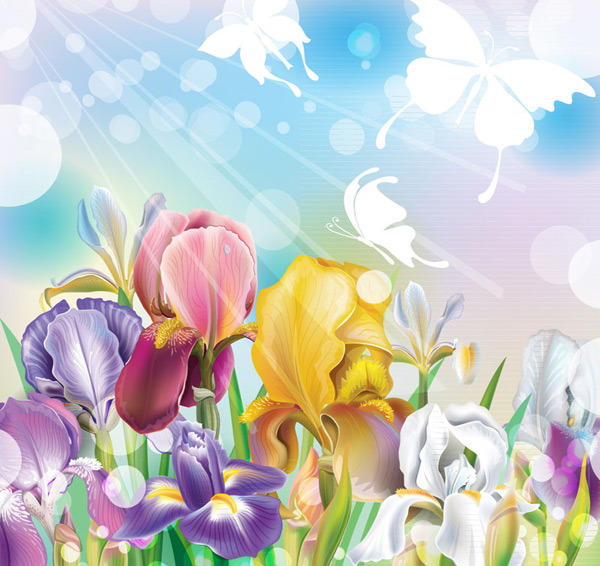 Colorful irises and flowers