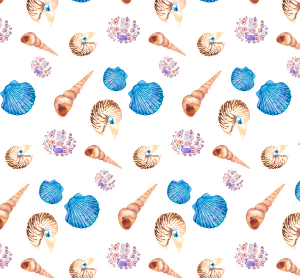 Conch and shell background