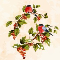 Hand painted birds and fruits