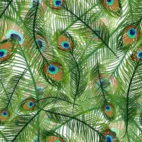 Seamless background of peacock feathers