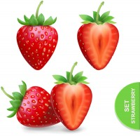 Strawberry and tangent vector