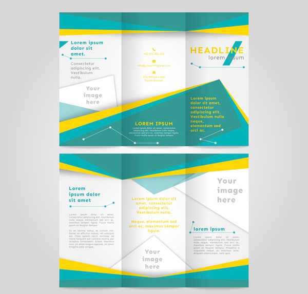 Three folding business Brochure