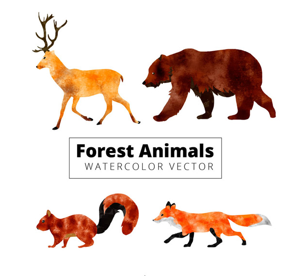 Water painted forest animals