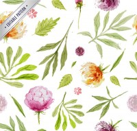 Watercolor plants background