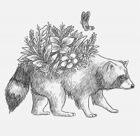 A flowering raccoon on his back