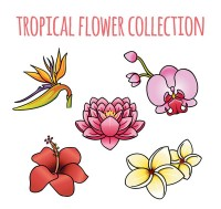Cartoon tropical flowers