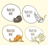 Cat language bubbles