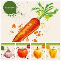 Hand painted fruit and vegetable illustrations