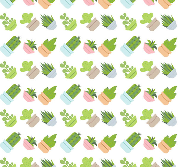 Potted succulents vector