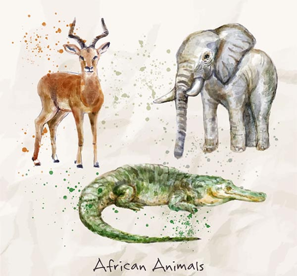Water painted African animals
