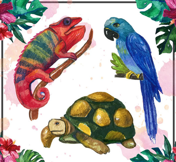 Water painted tropical animals