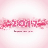 2017 greeting card vector
