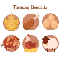Cartoon farm elements