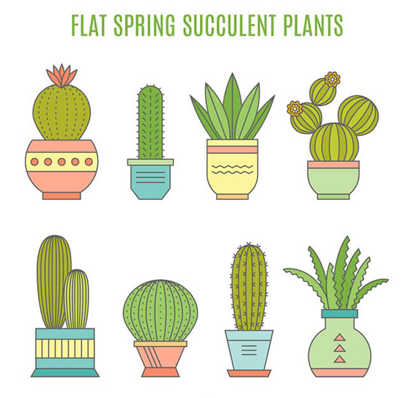 Cartoon potted succulents