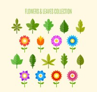 Flowers and leaf vectors