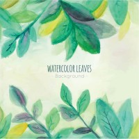 Green watercolor leaves