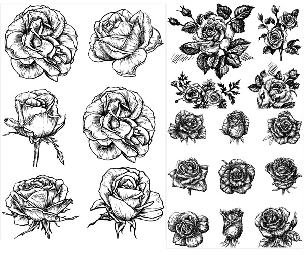 Monochrome hand painted flowers