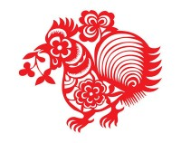 Rooster paper cut vector