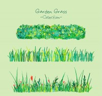 Water Painted Garden grassland
